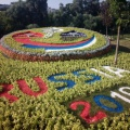 Фестиваль цветов, который прошёл в нашем городе. Фоторепортаж
