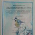 Смотр-конкурс кормушек «Птичья столовая». Фотоотчет