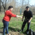 Фотоотчет экологической акции «Посади дерево»
