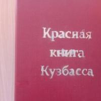 Фотоотчёт «Красная книга Кузбасса»