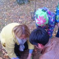 Фотоотчет «Наши добрые дела. Акция «Посади дерево»