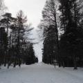 «Где-то есть город…» Фотоочерк о прогулке в Зеленогорске