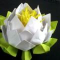 Мастер-класс «Священный лотос». Модульное оригами