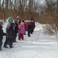 Экскурсия в зимний лес с детьми старшего дошкольного возраста
