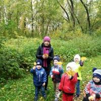 Фотоотчёт о проекте «Осени яркие краски» в средней группе