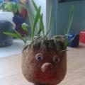 Фотоотчет о проведении мастер-класса для родителей «Экологическая игрушка «Травянчик» своими руками»