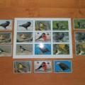 Настольно— дидактическая игра «Птицы» для детей дошкольного возраста.