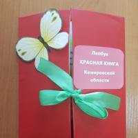Мастер-класс по изготовлению лэпбука «Красная книга Кемеровской области»