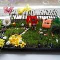 Огород на окне (оформление детского сада)