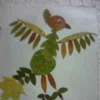 Фотоотчет о художественном творчестве детей «Аппликация с использованием природного материала»