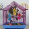 Мастер-класс «Забавные птички»