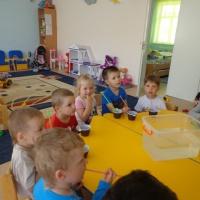 Опытно-экспериментальная деятельность в подготовительной группе детского сада «Волшебницавода»