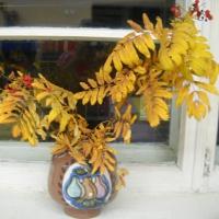 Конспект НОД по рисованию «Осенняя ветка рябины» в подготовительной группе