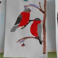 Конспект НОД по рисованию «Снегири на ветке рябины» в подготовительной группе