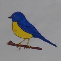 Дидактическая игра по математике «Посчитай птичек» для дошкольного возраста