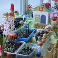 «Подарок весне-огород на окне.» Занятие во 2-ой младшей группе в рамках проекта «Малыш и природа в ДО»