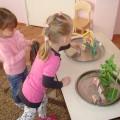 Конспект занятия по расширению представлений детей второй младшей группы о диких и домашних животных «Кто в домике живет?»