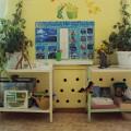 Предметно-развивающая среда в детском саду по ФГОС