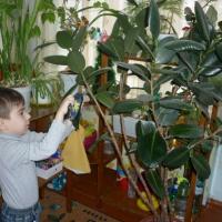 Из опыта работы «Особенности трудового воспитания детей младшего дошкольного возраста»