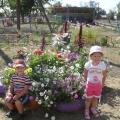 Клумбы на участке детского сада