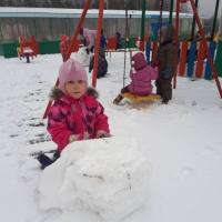 Фотоотчет о прогулке «Первый снег»