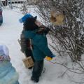 Фотоотчет об экологической акции «Кормушка»