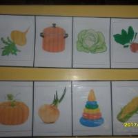 Дидактическая игра «Четвертый лишний» в рамках изучения темы «Овощи»