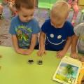 Проект по экологическому воспитанию «Зачем растениям нужна вода»