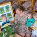 Конспект по познавательному развитию для детей первой младшей группы «Деревья в лесу»