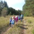 Фотоотчёт «Экскурсия в осенний лес». Средняя группа