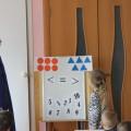 Открытое занятие в старшей группе по математике «Путешествие в математическое королевство»