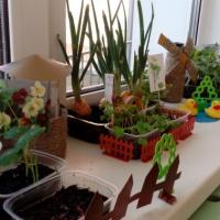 Познавательно-исследовательская деятельность через проект «Огород на подоконнике» для детей 3–4 лет