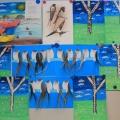 Конспект НОД по познавательному развитию в старшей группе детского сада «Весна. Весенние приметы»