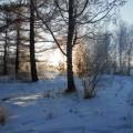 Зимняя красота природы Хакасии (фотозарисовка)