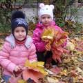 «Осенний лес» (интегрированное занятие-путешествие в средней группе)
