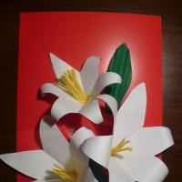 Мастер класс по конструированию из бумаги «Поздравительная открытка»