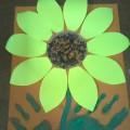 «Солнечный цветок-подсолнух»