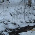 Небольшие зарисовки о зиме