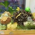 Конкурс поделок из природного материала «Осенняя фантазия» (фотоотчет)