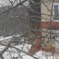 Экологическая акция «Покормите птиц зимой»