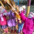 Фотоотчёт. Коллективная работа по аппликации «Осеннее дерево желаний»