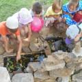 Экологическая тропа как средство укрепления физического и психического здоровья детей