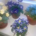 Мое хобби— изготовление цветов и деревьев из бисера