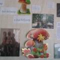 Стенгазета «Мы помощники для дедушки и для бабушки» (выставка фотографий воспитанников со старшим поколением)