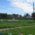 Экскурсия на станцию юных натуралистов летом