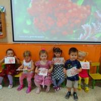Фотоотчёт из жизни детского сада «Осень разноцветная»