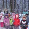 Фоторепортаж зимняя прогулка на птичий дворик г. Березники