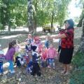 Фотоотчет «Экскурсия по территории участка» для детей второй младшей группы