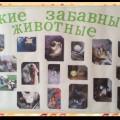 Стенгазета «Такие забавные животные!»