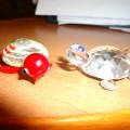 Фотоотчет Мои черепашки!